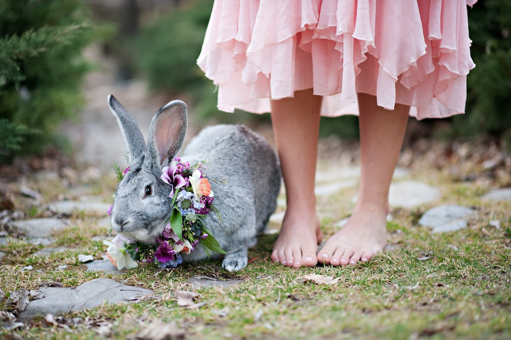 wedding flowers utah calie rose whimsical bunny inspiration