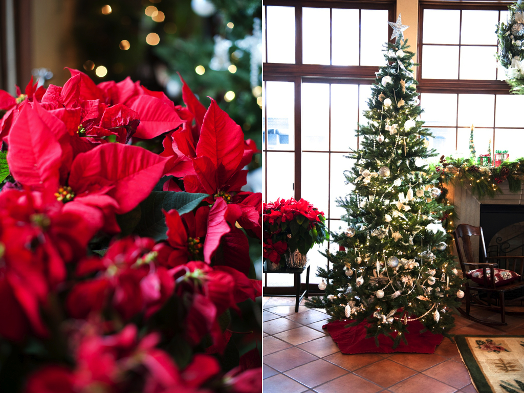 Silver and white old fashioned inspired christmas tree utah florist calie rose