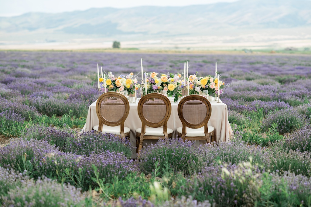 South of France Wedding, lavender field wedding, lavender wedding ideas, lavender inspired wedding, wedding flowers utah calie rose, stunning tablescapes