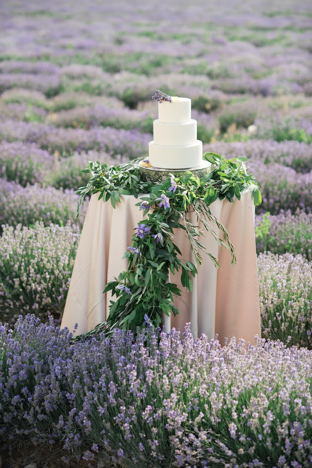 South of France Wedding, lavender wedding cake inspiration, lavender wedding cake ideas, wedding flowers utah calie rose