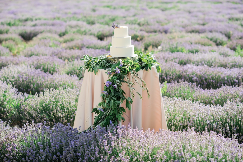 South of France Wedding, lavender field wedding cake, stunning summer wedding cakes utah calie rose
